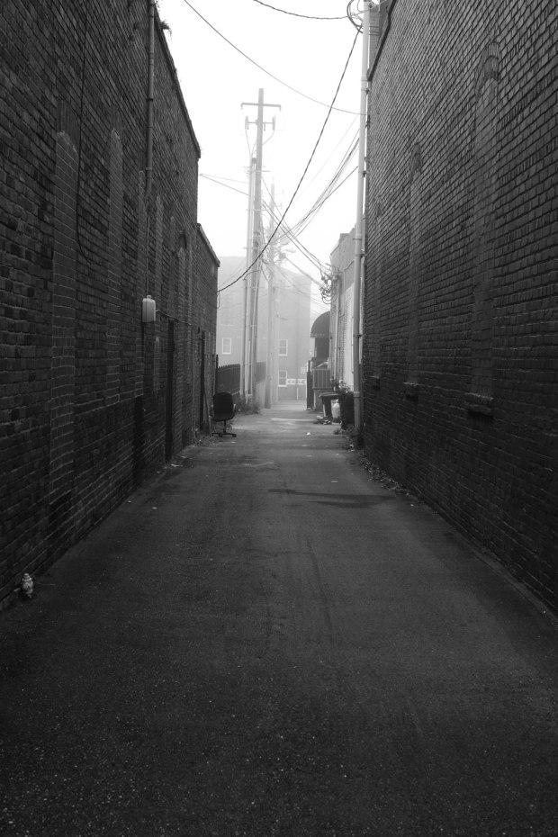 Morning_Fog4w